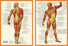 Kaart-A4-Spieren