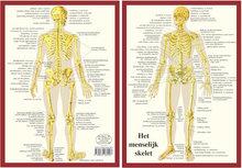 Kaart-A4-Skelet