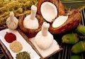 Kokosstempels--Scrubstempels